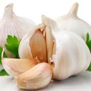 garlic-and-cilantro