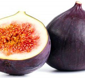 figs web image