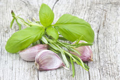 http://www.dreamstime.com/stock-image-fresh-garlic-rosemary-basil-image27120391